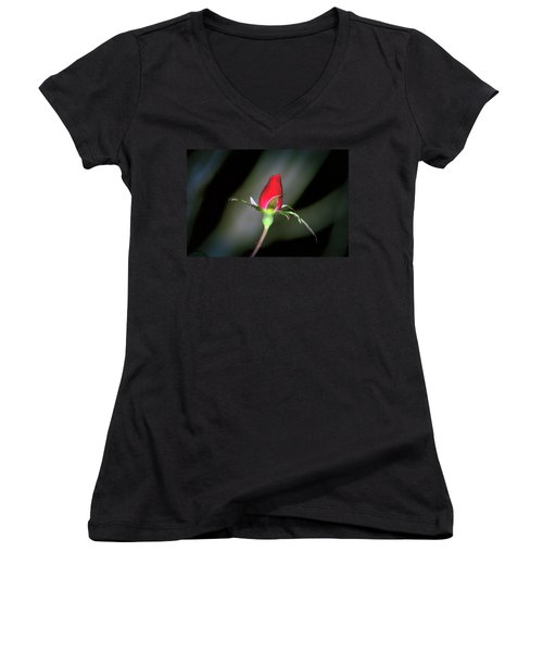 Symbolic  Women's V-Neck