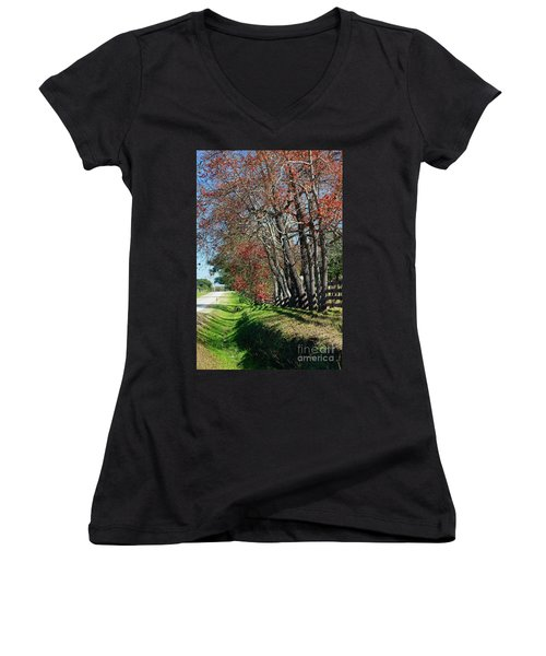 Texas Fall Women's V-Neck T-Shirt (Junior Cut) by Lori Mellen-Pagliaro