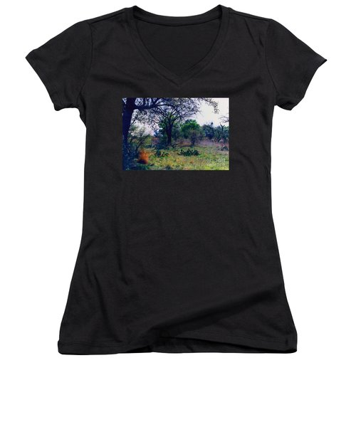Texas Hill Country Women's V-Neck T-Shirt (Junior Cut) by Fred Jinkins