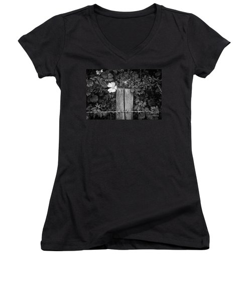 The Allotment Project - Dog Rose Women's V-Neck