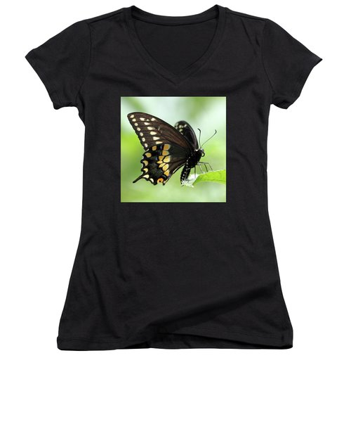 The Beautiful Black Swallowtail Women's V-Neck (Athletic Fit)