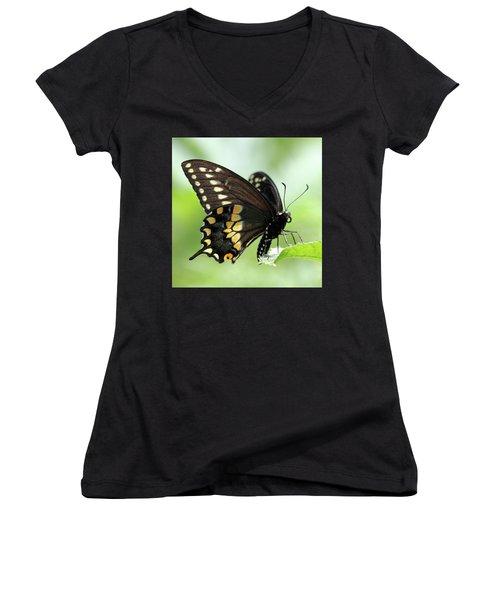 The Beautiful Black Swallowtail Women's V-Neck T-Shirt