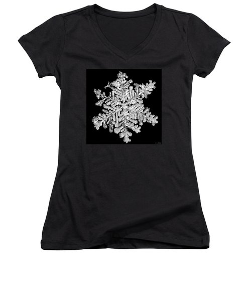 The Beauty Of Winter Women's V-Neck