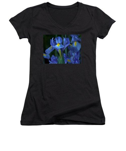 The Blues Women's V-Neck T-Shirt