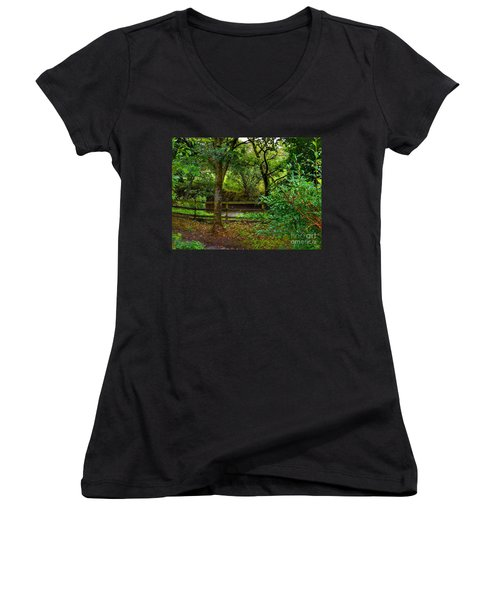 The Brook At Gibbon's Bridge Women's V-Neck (Athletic Fit)