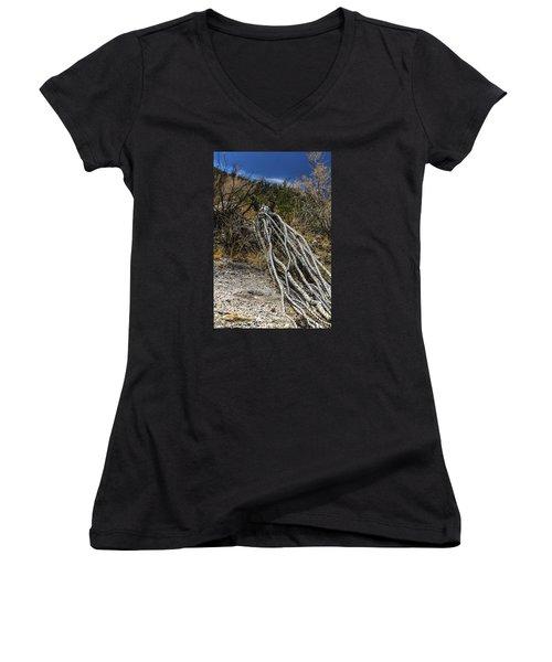 The Desert Sentinel Women's V-Neck