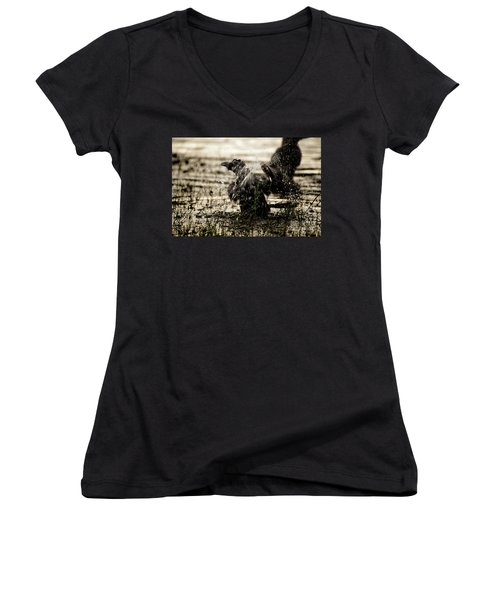 The Eastern Jungle Crow Corvus Macrorhynchos Levaillantii Women's V-Neck (Athletic Fit)