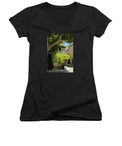 The Flower Box Women's V-Neck T-Shirt (Junior Cut) by John Stuart Webbstock