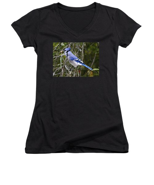 The Gathering Women's V-Neck T-Shirt (Junior Cut) by Robert Pearson