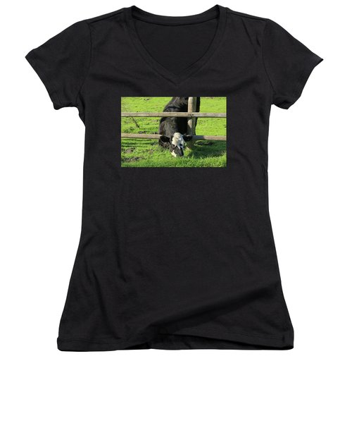 Women's V-Neck T-Shirt (Junior Cut) featuring the photograph The Grass Is Always Greener by Art Block Collections