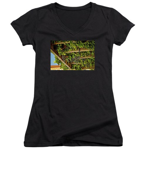 The Hanging Grapes Women's V-Neck (Athletic Fit)