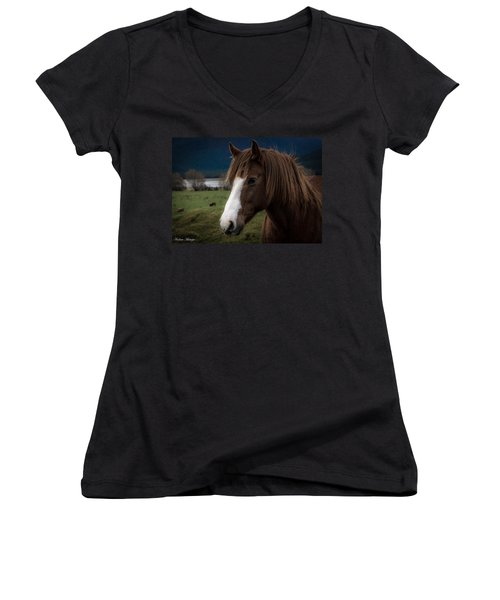 The Horse Women's V-Neck T-Shirt (Junior Cut) by Andrew Matwijec