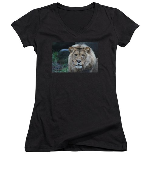 Women's V-Neck T-Shirt (Junior Cut) featuring the photograph The King by Laddie Halupa