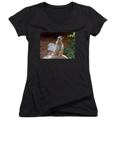 The Lookout - Meerkat Women's V-Neck (Athletic Fit)
