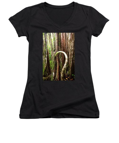 The Rainforest Women's V-Neck