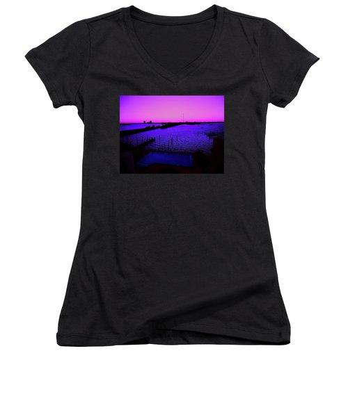 The Purple View  Women's V-Neck