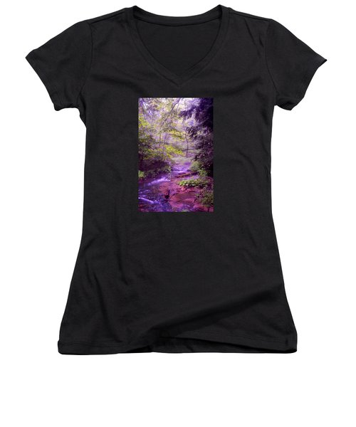 The Wonder Of Nature Women's V-Neck T-Shirt (Junior Cut) by John Stuart Webbstock