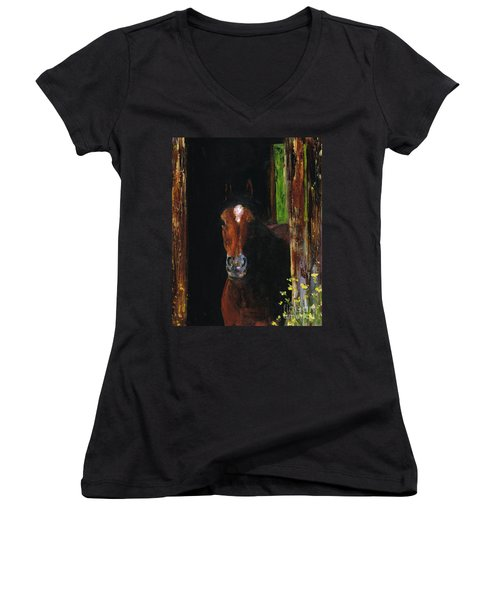 Theres Bugs Out There Women's V-Neck