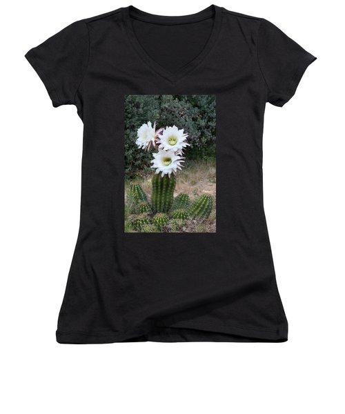 Three Blossoms Women's V-Neck T-Shirt (Junior Cut) by Monte Stevens