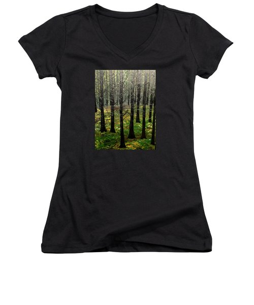 Through It All Women's V-Neck T-Shirt (Junior Cut) by Lisa Aerts