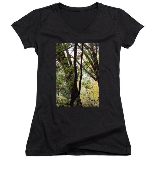 Through The Trees Women's V-Neck
