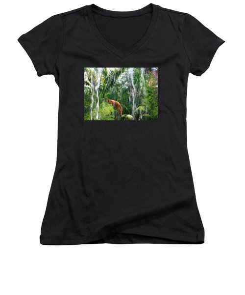 Through The Waterfall Women's V-Neck