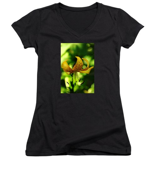 Tiger Lily Women's V-Neck T-Shirt (Junior Cut) by Debbie Oppermann