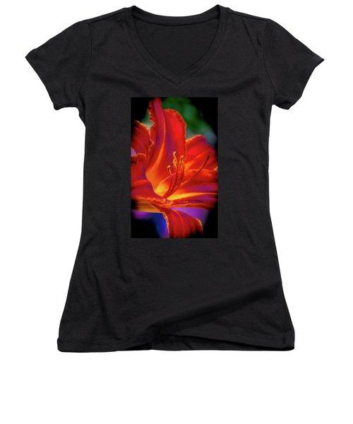 Tiger Lily Women's V-Neck T-Shirt (Junior Cut) by Mark Dunton