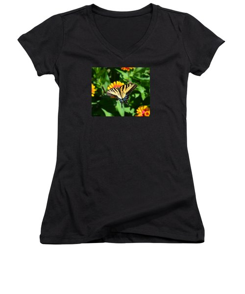 Tiger Swallowtail Butterfly Women's V-Neck