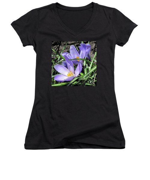 Time For Crocuses Women's V-Neck T-Shirt
