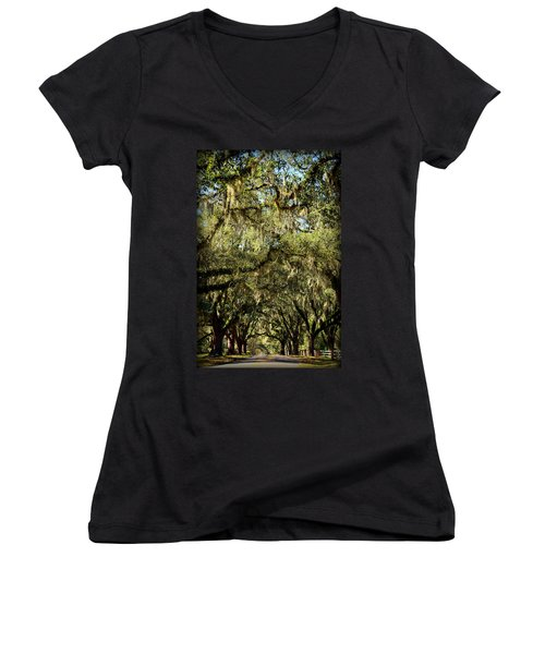 Towering Canopy Women's V-Neck T-Shirt (Junior Cut) by Carla Parris