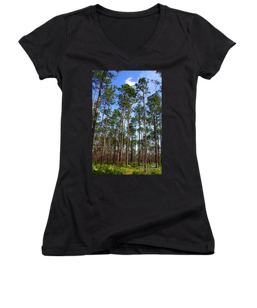 Trail Through The Pine Forest Women's V-Neck
