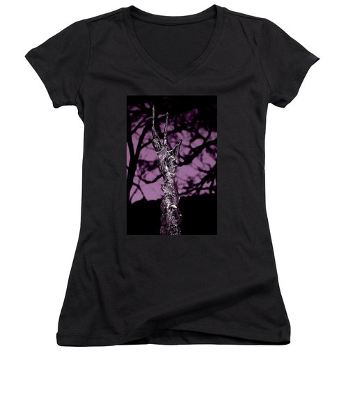 Transference Women's V-Neck T-Shirt (Junior Cut) by Danielle R T Haney