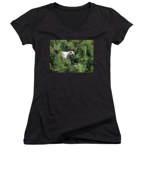 Tree Bandit Women's V-Neck T-Shirt (Junior Cut) by Shirley Heyn
