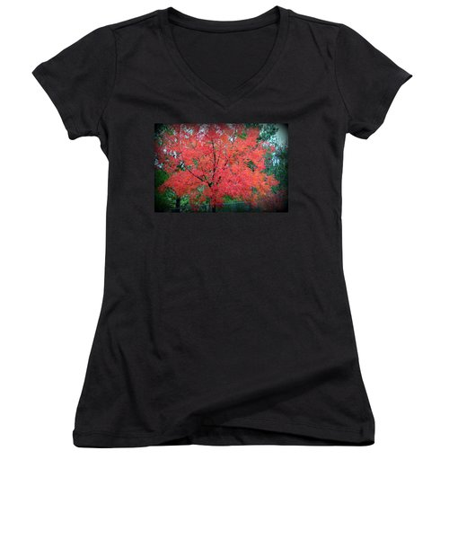 Women's V-Neck T-Shirt featuring the photograph Tree On Fire by AJ Schibig