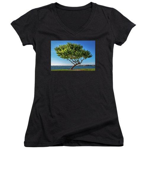 Tree On The Bay Women's V-Neck