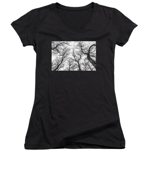 Women's V-Neck T-Shirt (Junior Cut) featuring the photograph Tree Tops by Sue Smith