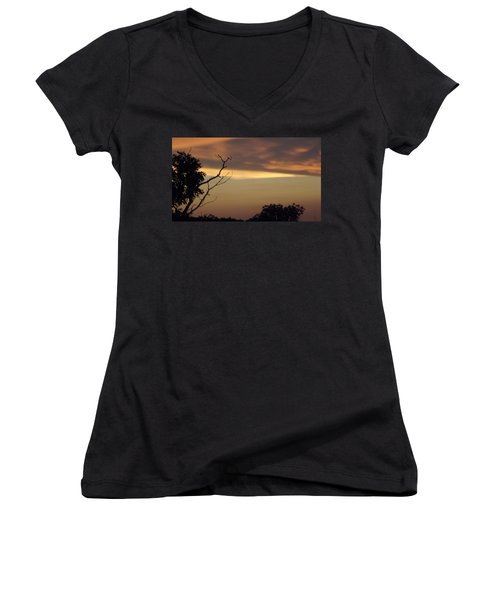 Trees Of The Lake Women's V-Neck T-Shirt (Junior Cut) by Don Koester