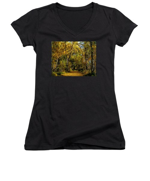 Trees Over A Path Through The Woods In Fall Color Women's V-Neck T-Shirt (Junior Cut) by John Brink