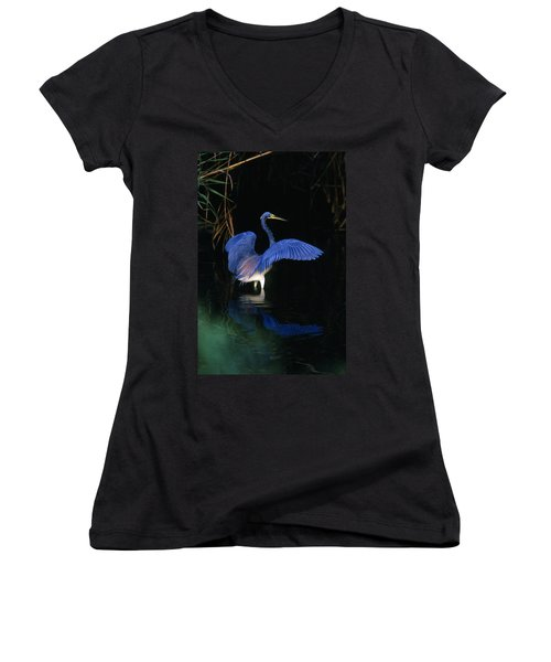 Tri-colored Heron - Fs000031 Women's V-Neck (Athletic Fit)