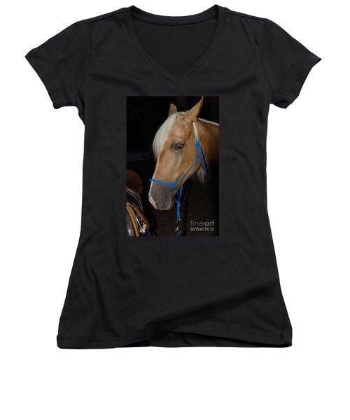 Trigger Ancestry Line Women's V-Neck T-Shirt