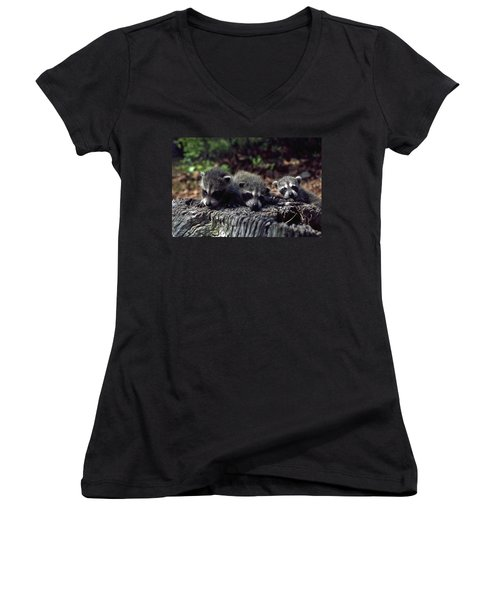 Women's V-Neck T-Shirt (Junior Cut) featuring the photograph Triplets by Sally Weigand