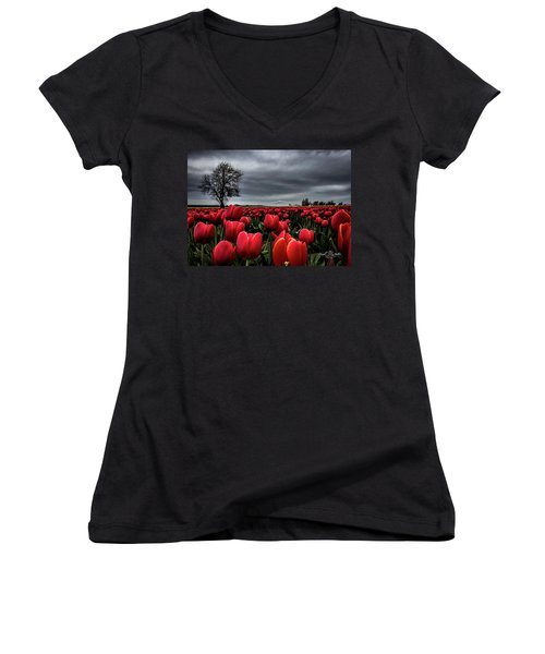 Tulip Fields Women's V-Neck (Athletic Fit)