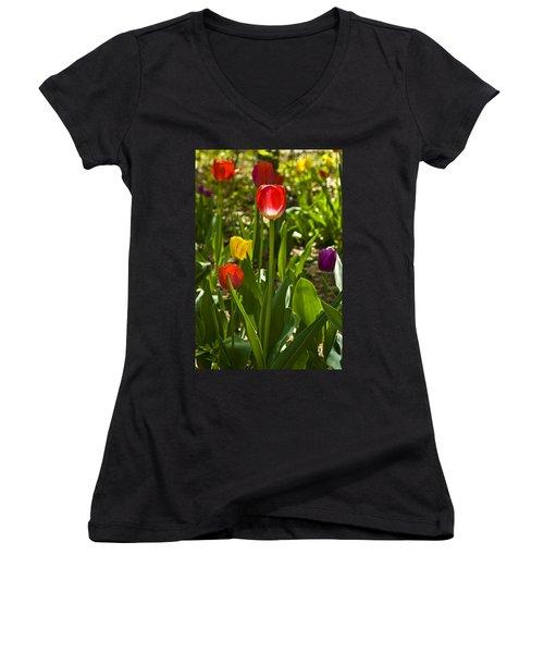 Tulips In The Garden Women's V-Neck