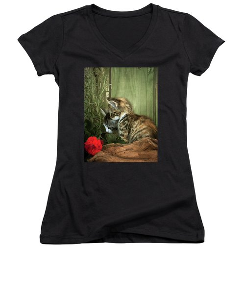 Two Cute Kittens Women's V-Neck (Athletic Fit)