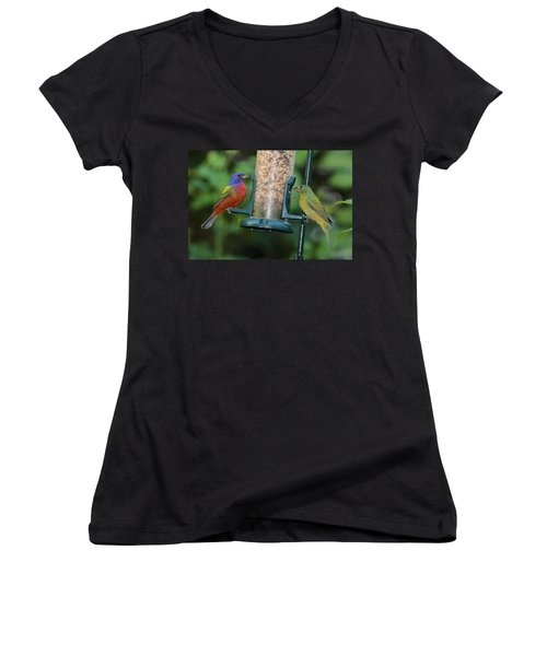 Two Painted Buntings Women's V-Neck