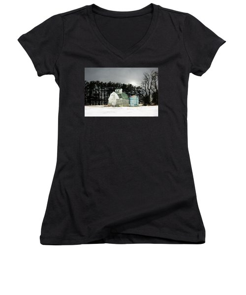 Women's V-Neck T-Shirt (Junior Cut) featuring the photograph Twos Company by Julie Hamilton