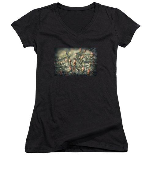 Unblown Rose Bush Women's V-Neck T-Shirt (Junior Cut) by Konstantin Sevostyanov