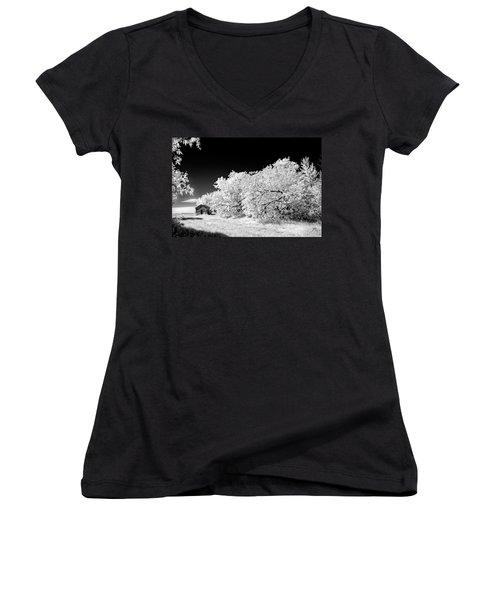 Women's V-Neck T-Shirt (Junior Cut) featuring the photograph Under A Dark Sky by Dan Jurak
