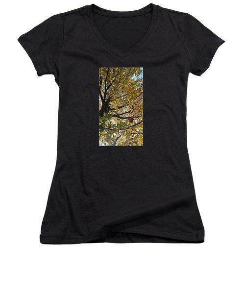 Upward Women's V-Neck T-Shirt (Junior Cut) by Jana E Provenzano